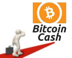 ビットコインキャッシュ今後の将来性