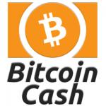 ビットコインキャッシュとは?買い方や取引所・今後の将来性解説